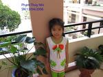 ThuyNhi Pham